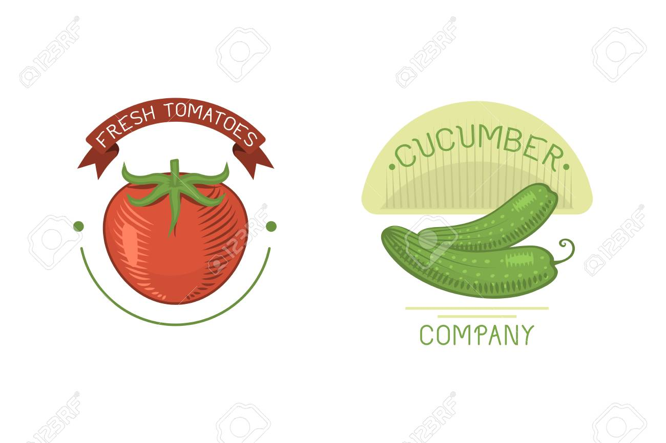 vector vegetables cucumber and tomato label template icon royalty