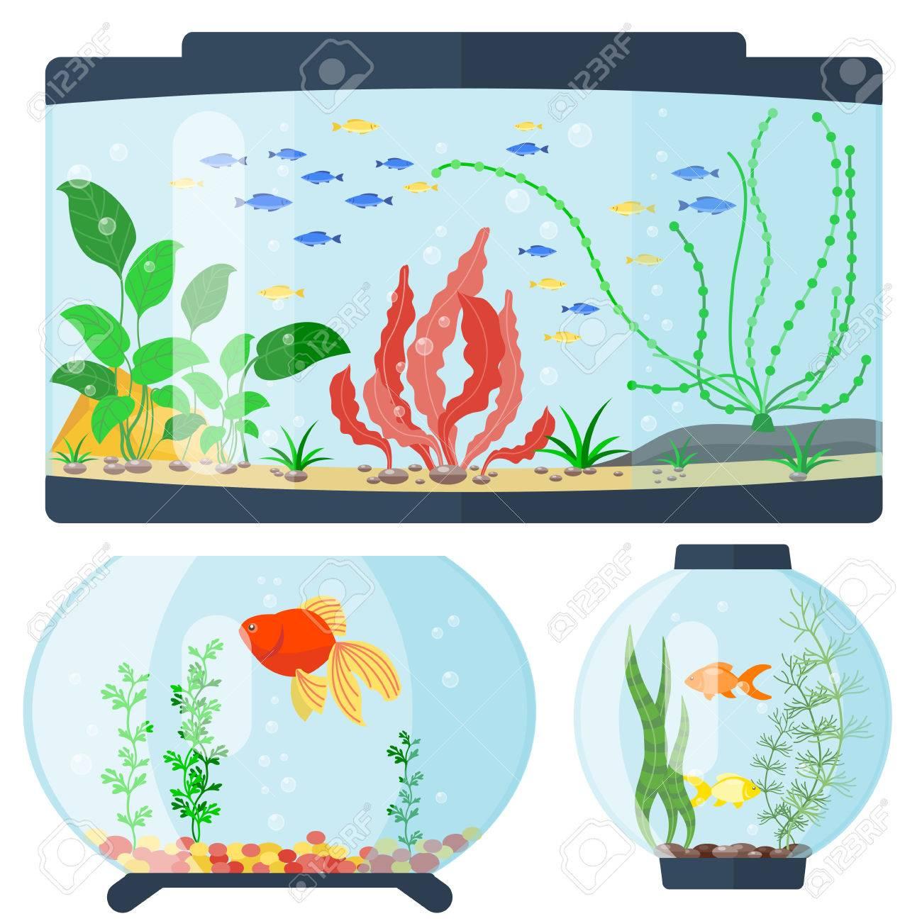 Transparent Aquarium Vector Illustration Underwater Fish Tank