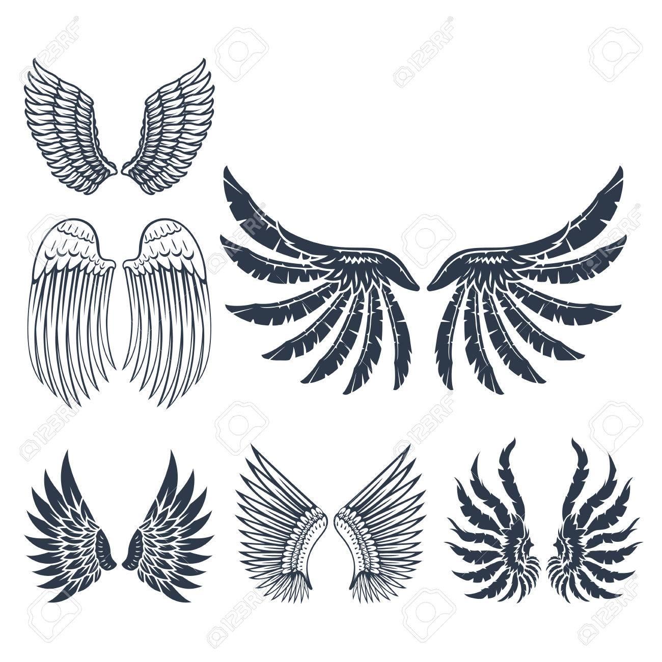 Flügel Lokalisierten Tierfedertriebvogel-Freiheitsflug Und ...