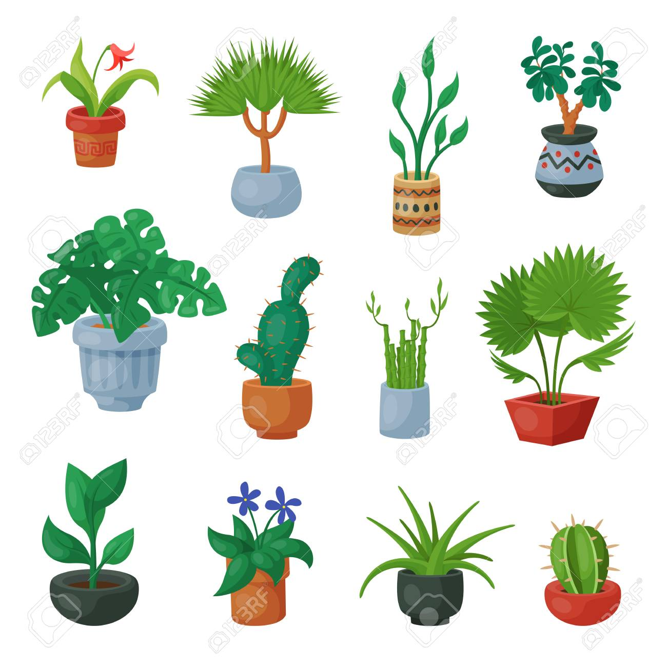 Plants In Flowerpots Vector Potted Flowery Houseplants For Interior  Decoration With Botanic Collection Floral Cactuses In