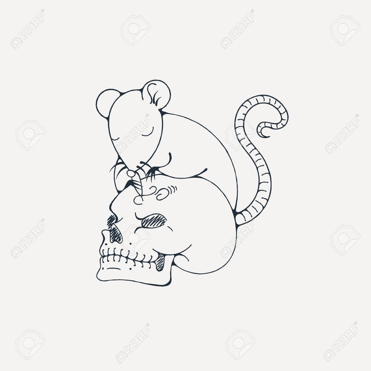 La Ilustración Con La Rata Graba El Cráneo Humano Dibujo Para