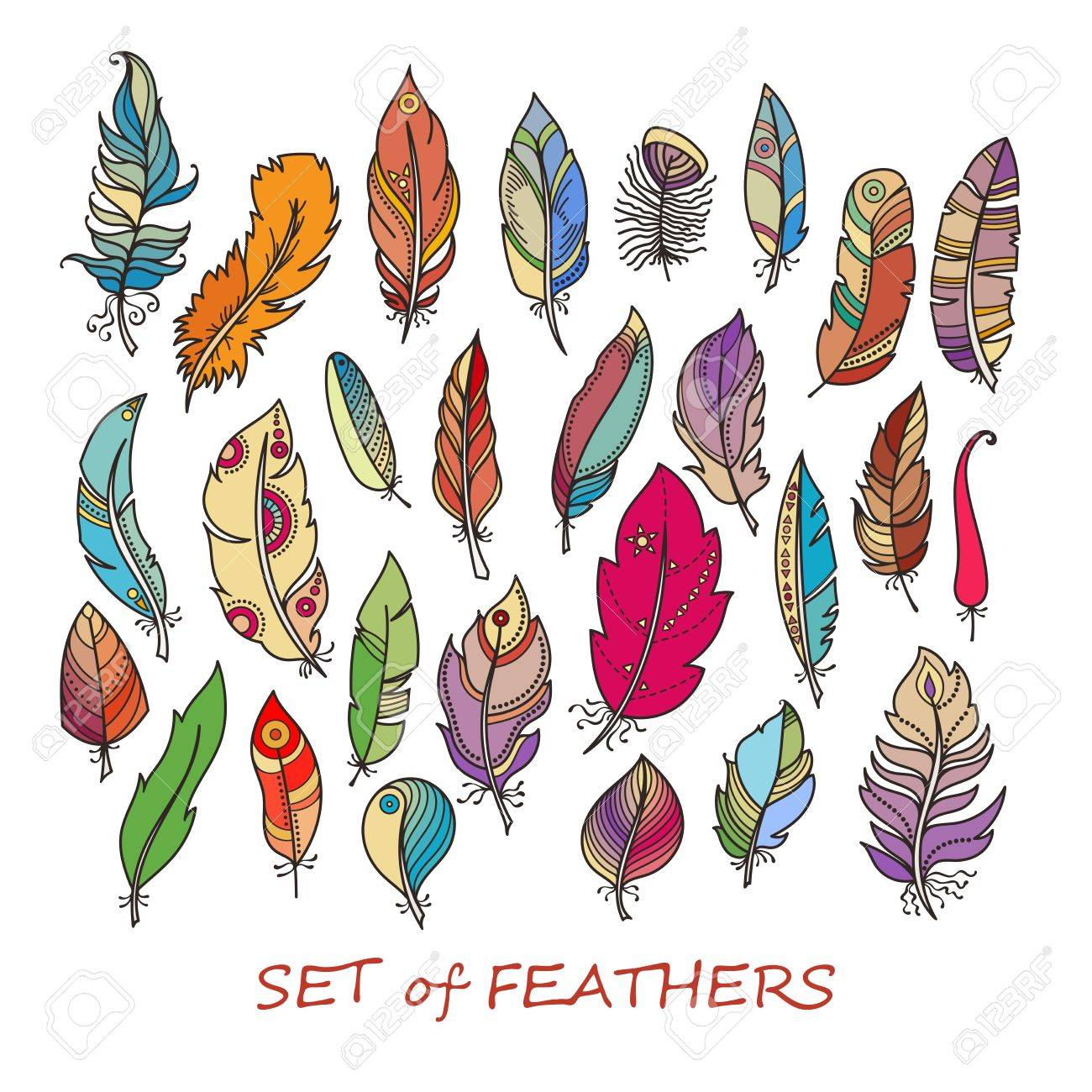 ornate set of stylized and abstract feathers elements for design and coloring pages