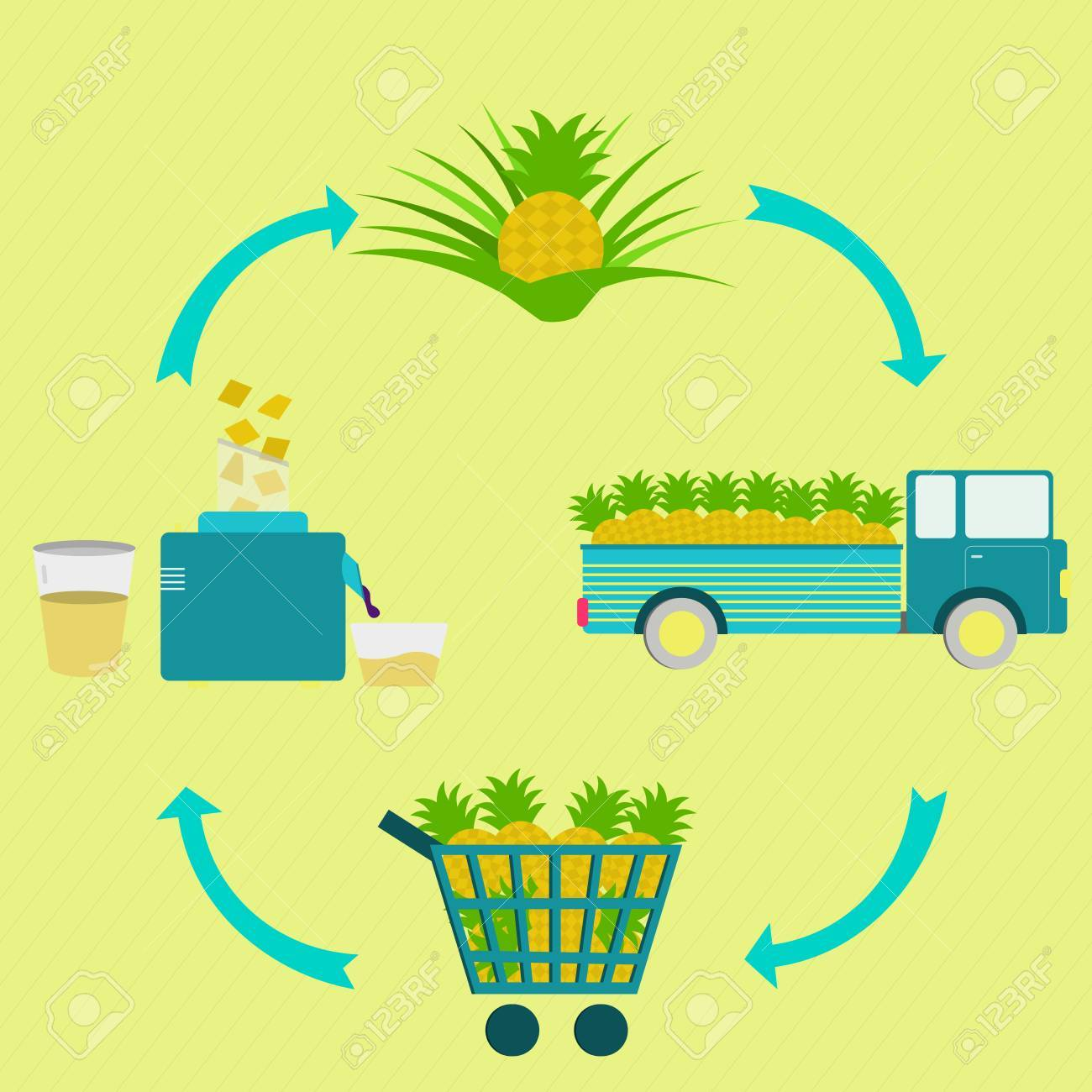 Process of pineapple juice. Pineapple juice production steps. Pineapple tree, harvest, transport, sale at the grocery store, production of pineapple juice at home. In a circular scheme. - 48371779