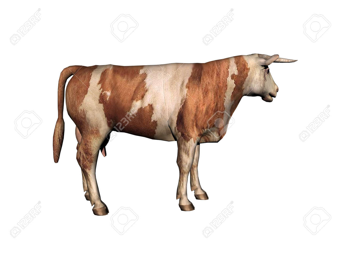 Cow as a meat supplier runs around in the pasture - 156477230