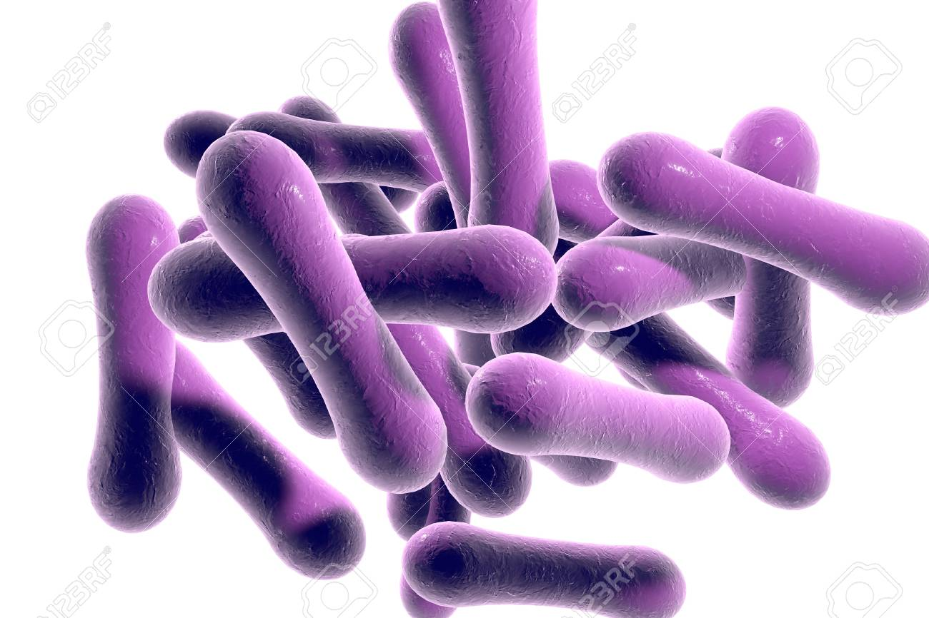 Bakterien, Die Diphtherie Corynebacterium Diphtheriae Verursachen ...
