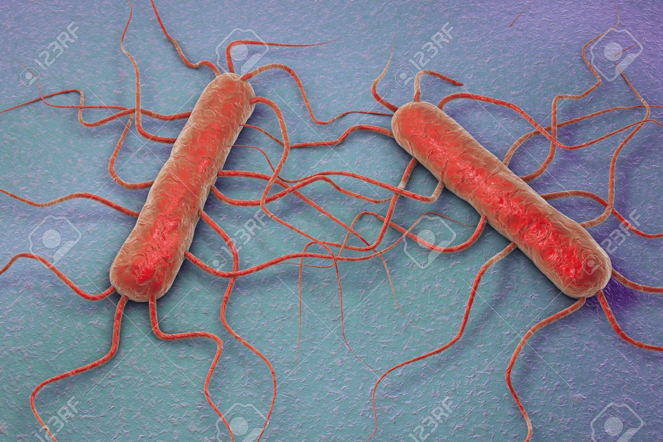 D Illustration Of Bacterium Listeria Monocytogenes Gram Positive Bacterium With Flagella Which Causes Listeriosis