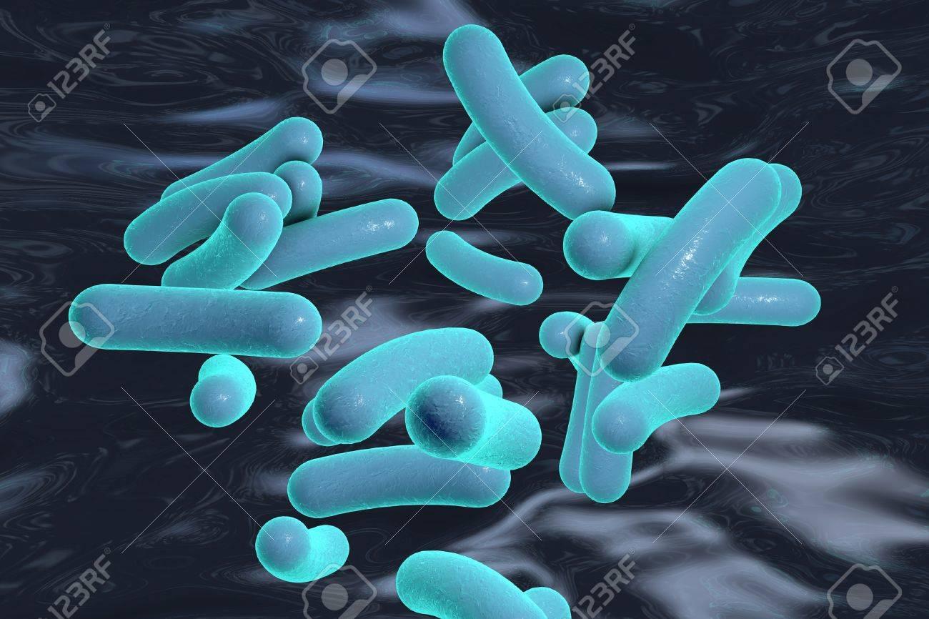 bacterie vibrio semne de parazit de tenie