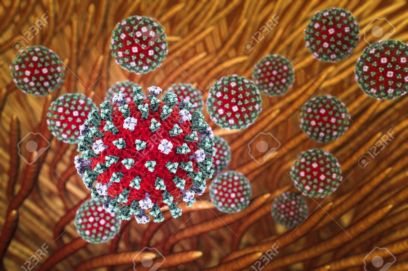 Influenza-Viren, Die Das Atmungssystem Infizieren. 3D-Darstellung ...