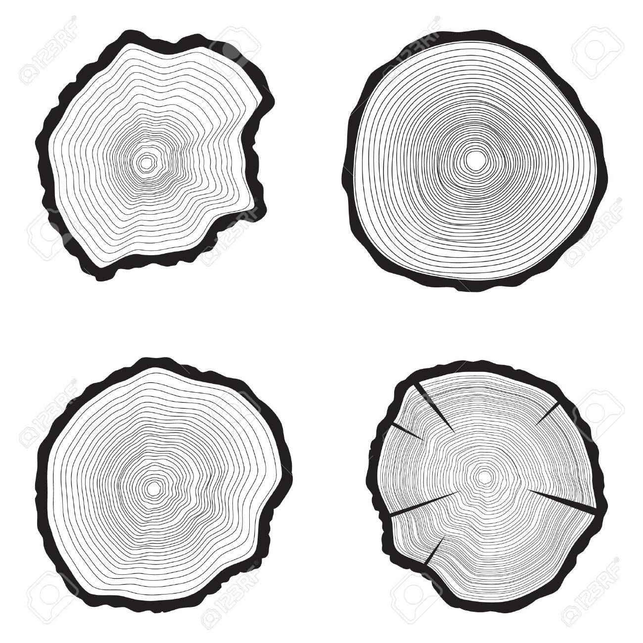 Set Tree rings background. Annual tree. vector illustration, - 43930016