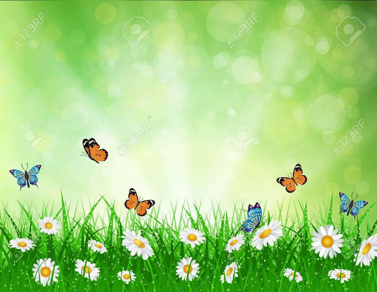 daisy vector background summer design flower green garden nature..
