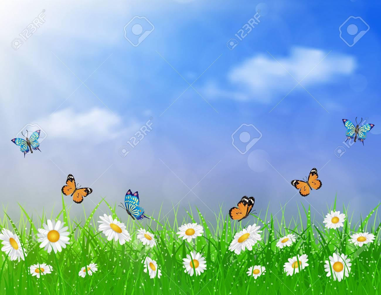 Daisy Vector Background Summer Design Flower Green Garden Nature Illustration Spring Of Blue Sky
