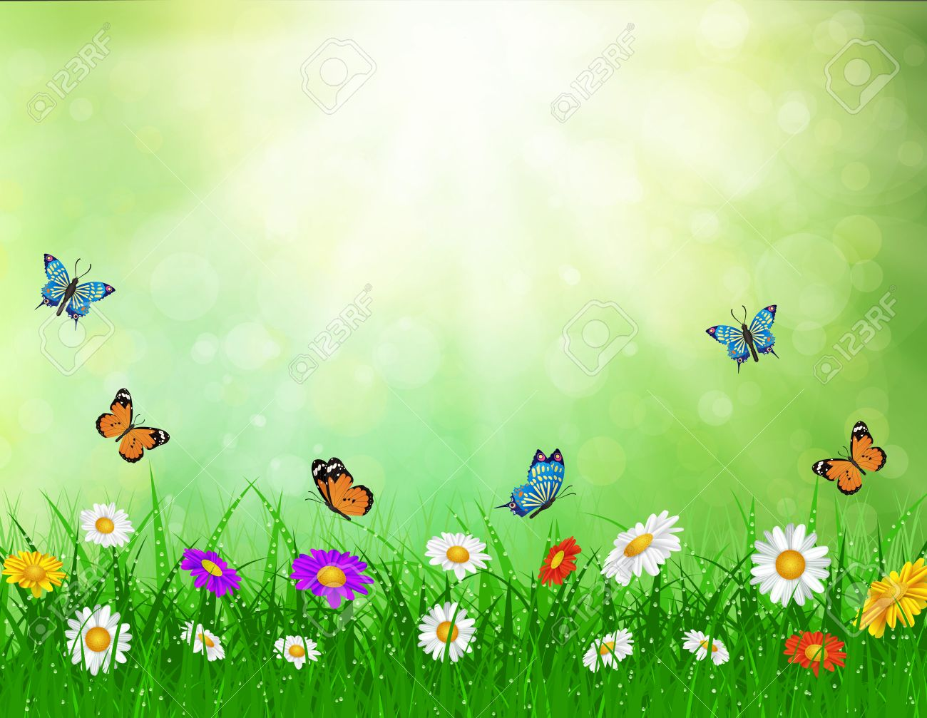 daisy vector background summer design flower green garden nature..