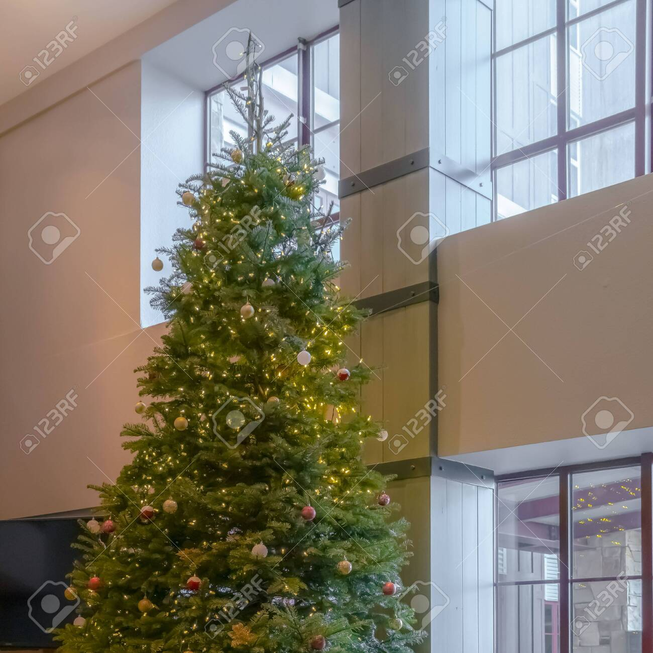 Traditional Christmas Tree.Clear Square Traditional Christmas Tree Decorated With Baubles