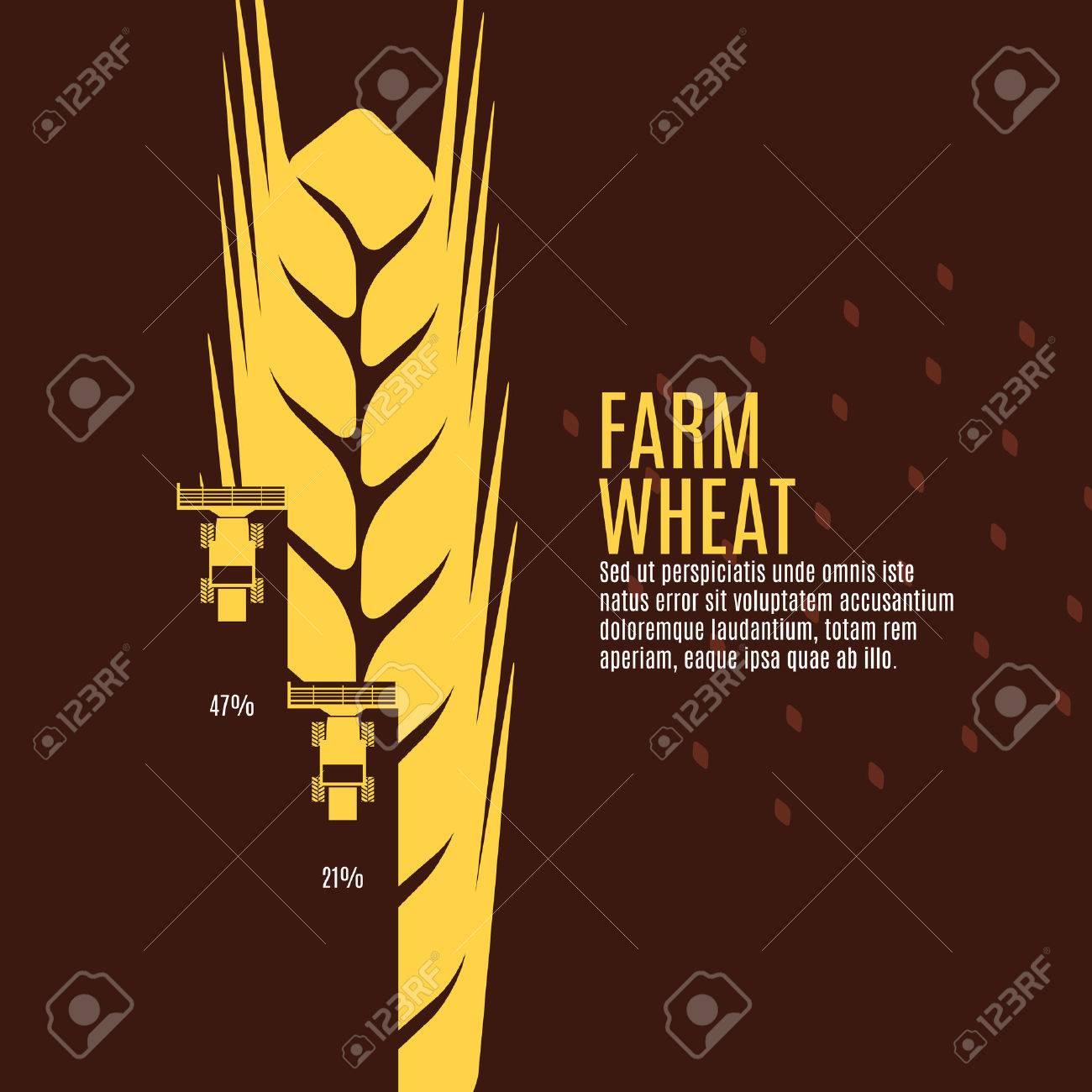 Farm wheat vector illustration - 48804775