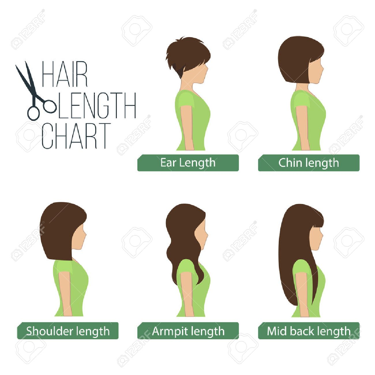 hair length chart side view, 5 different hair lengths. royalty
