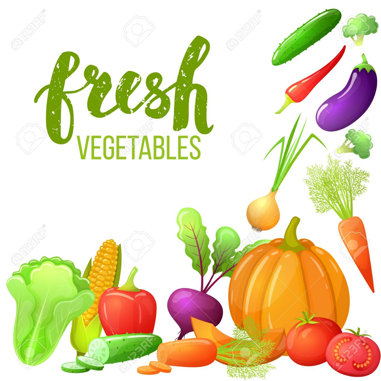 colorful cartoon set of vegetables icons eco organic fresh template