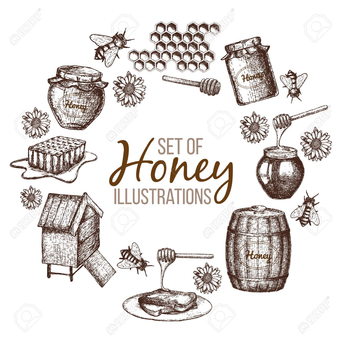 Set of honey sketch - 82366663