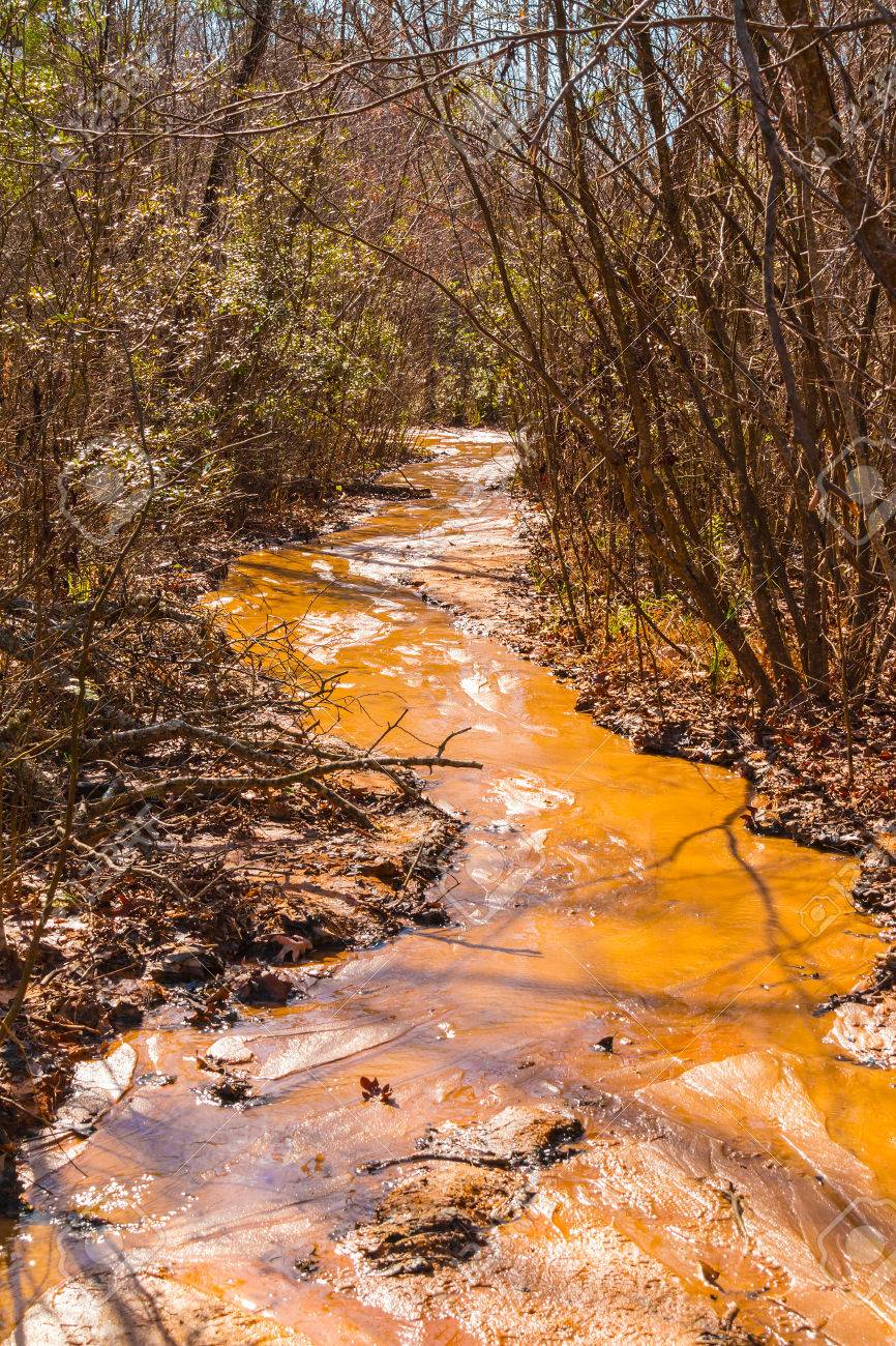 Red clay watercourse of creek and thicket in providence canyon red clay watercourse of creek and thicket in providence canyon state park at sunny autumn day publicscrutiny Image collections