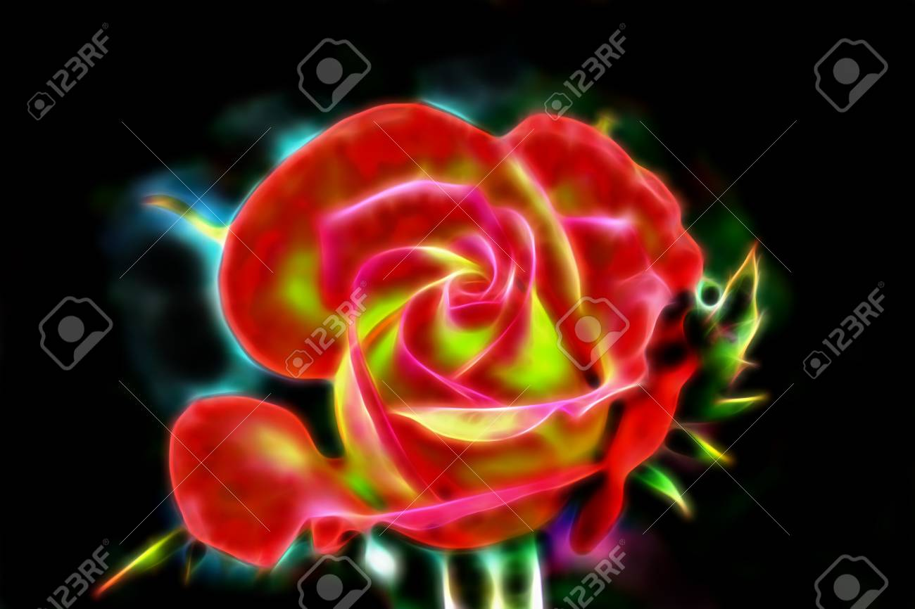 Abstract Glow Wire Red Rose On A Black Background. Stock Photo ...