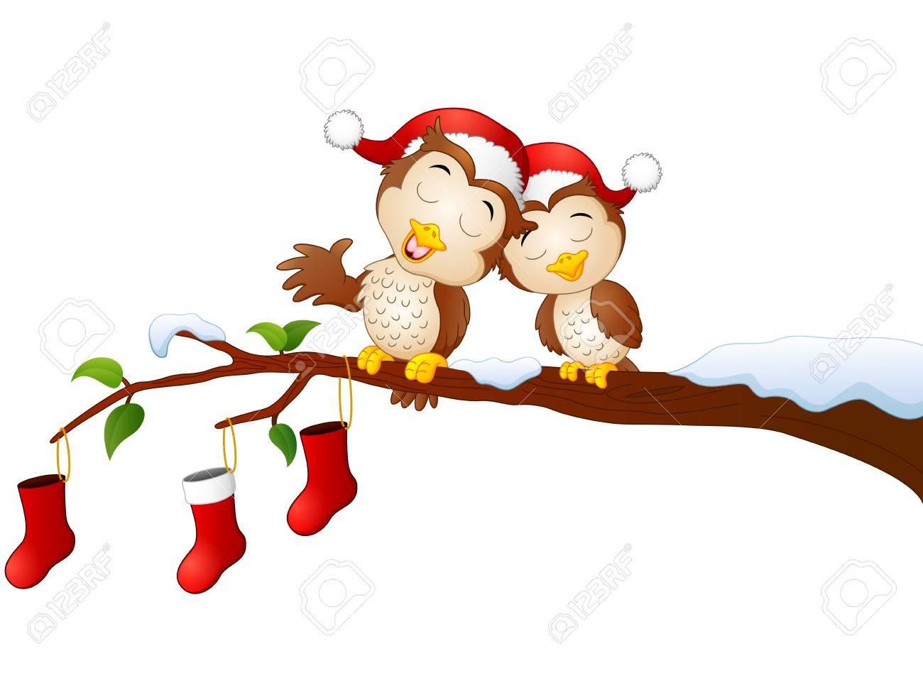 クリスマスの木の枝にクリスマス カップル フクロウのベクトル イラスト