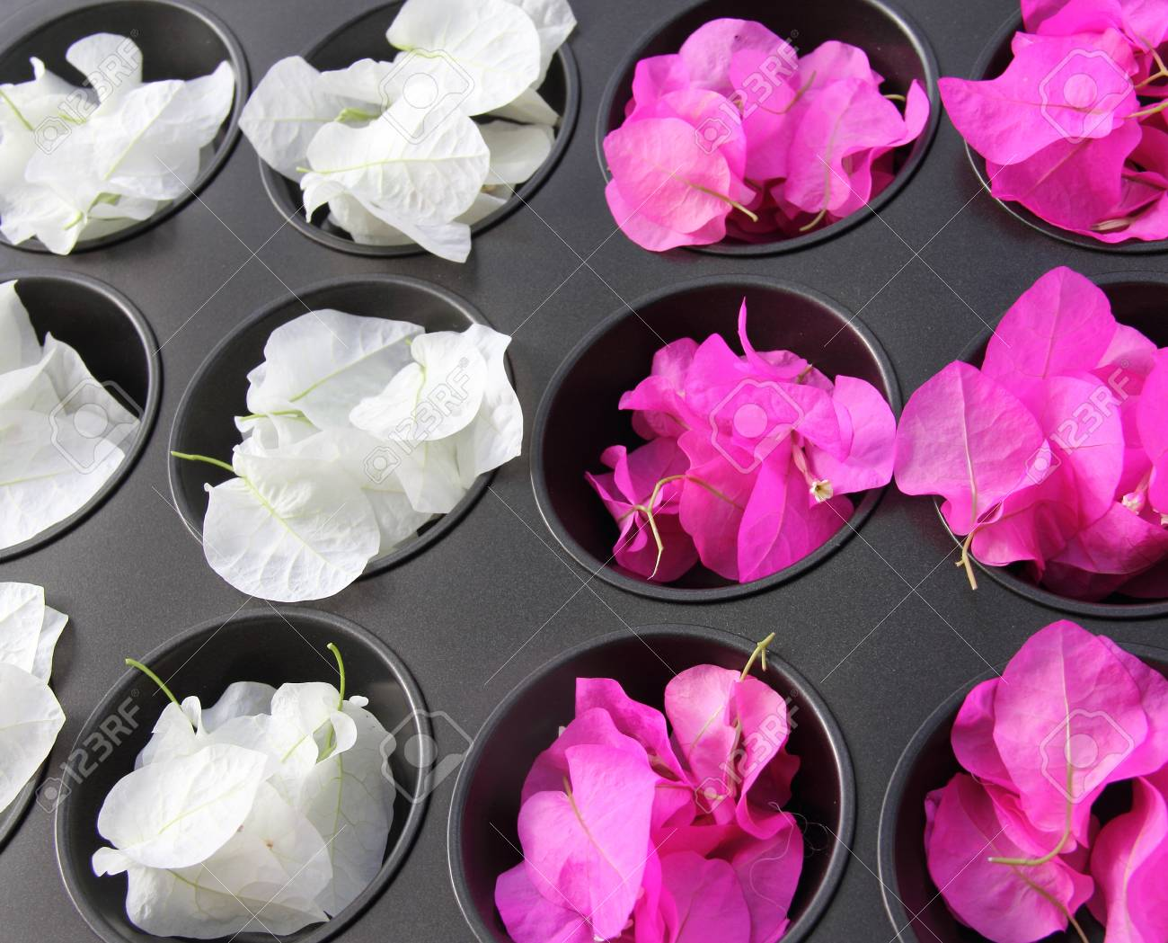 kitchenware with flowers Stock Photo - 12694719