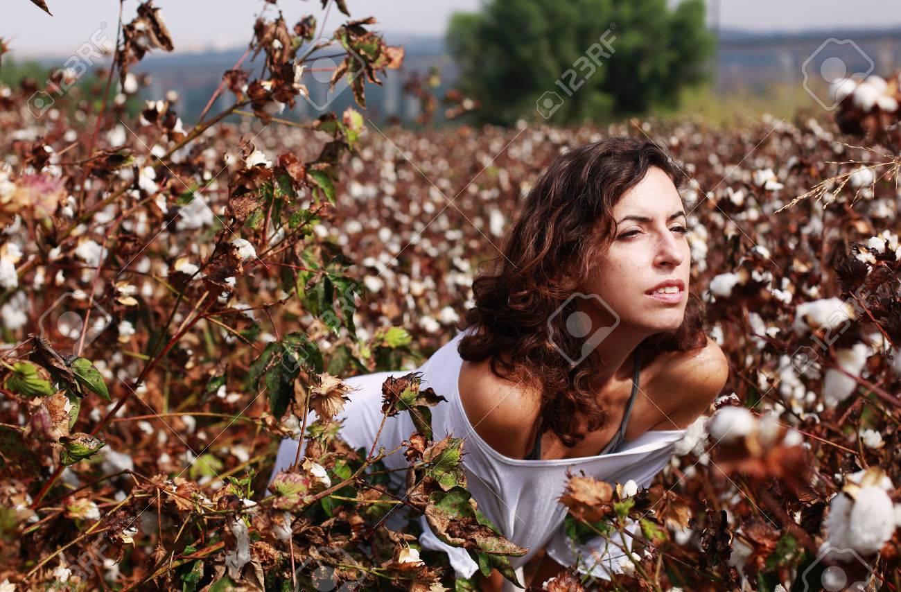 ผลการค้นหารูปภาพสำหรับ cotton field hdr