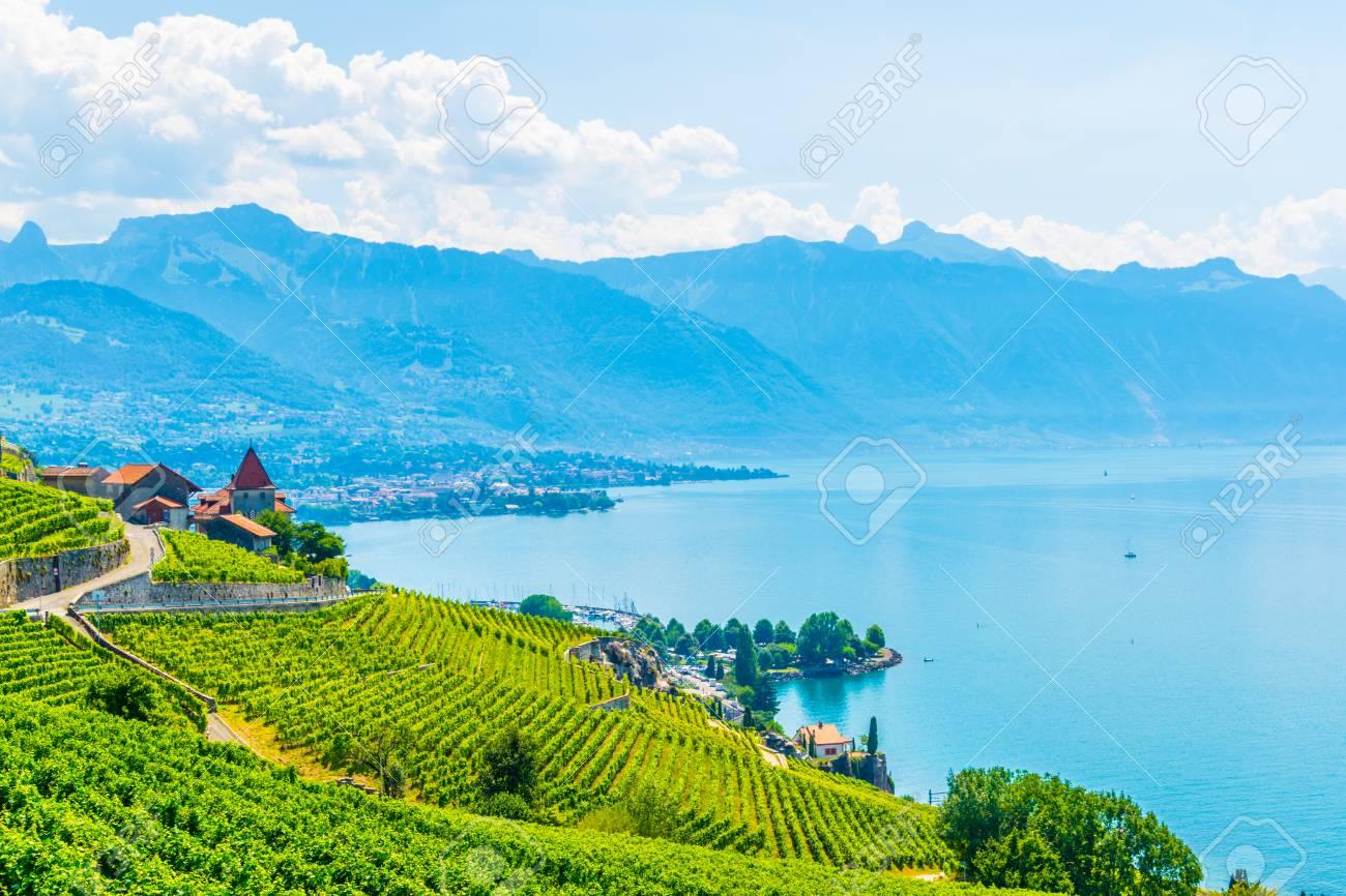 Lavaux wine region near Lausanne, Switzerland - 117279229