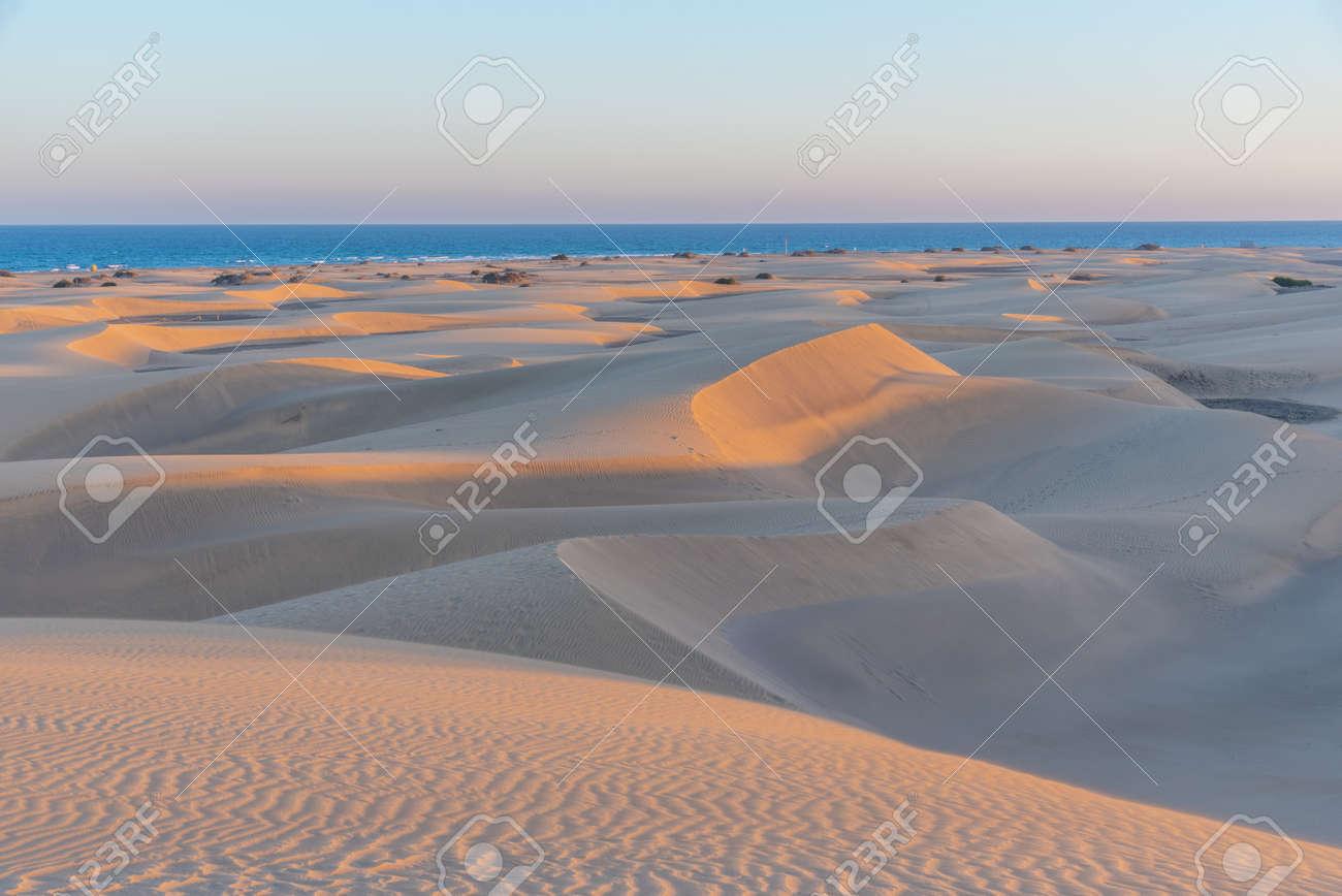 Sunset over sand dunes at Maspalomas, Gran Canaria, Canary Islands, Spain. - 166762515