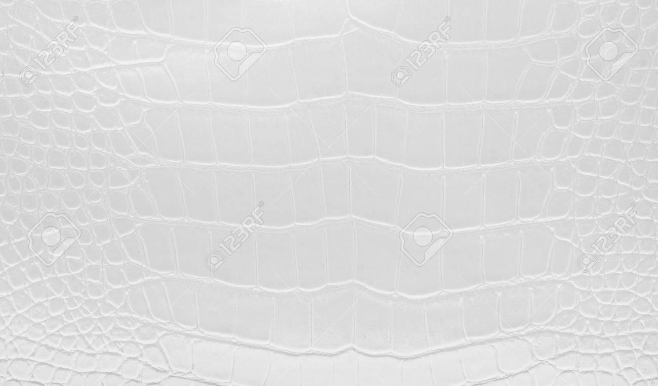 White Glossy Natural Crocodile Leather