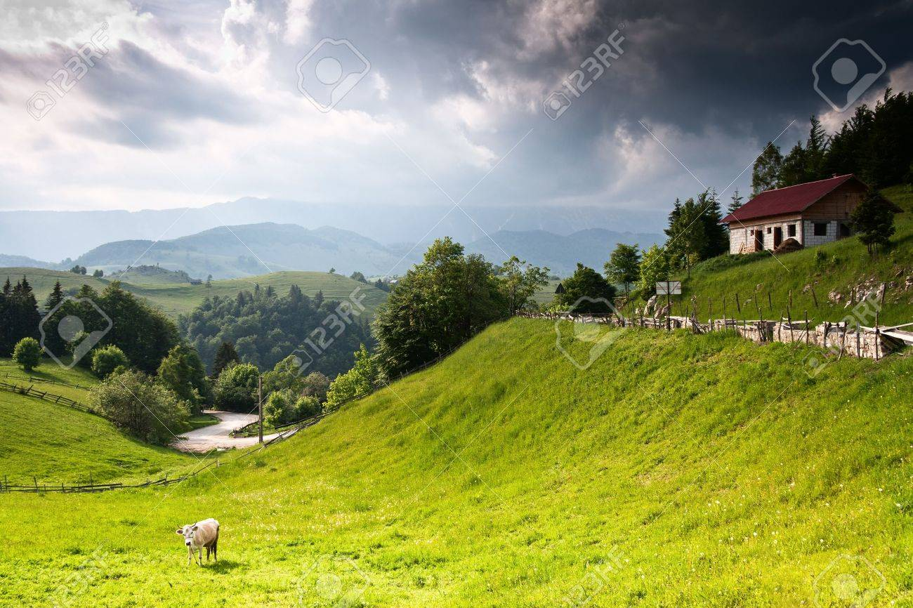 Beautiful vivid and amazing landscape from romanian countryside Stock Photo - 9146444