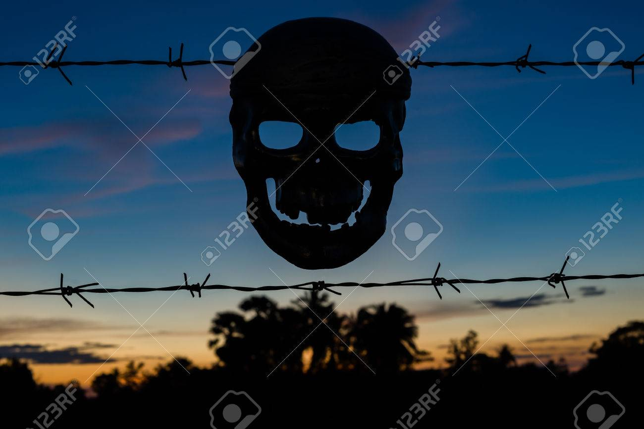 Skull With Barbed Wire Fence - WIRE Center •