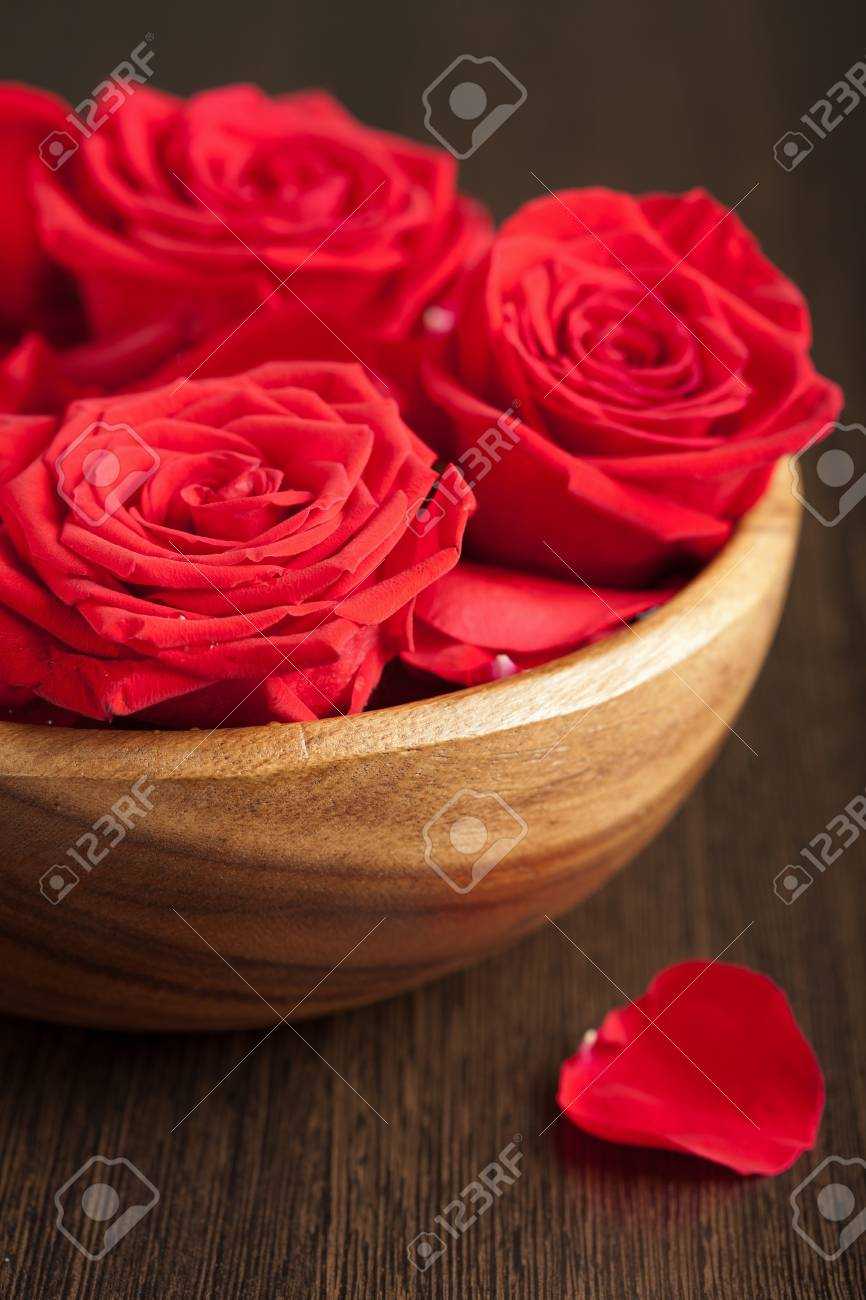 roses in bowl Stock Photo - 8358519