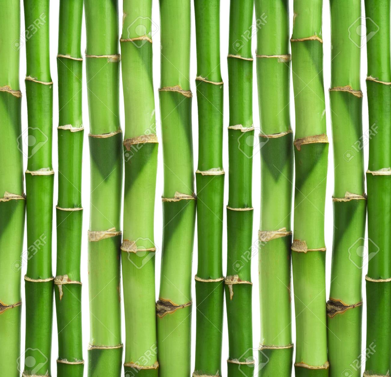 bamboo background isolated Stock Photo - 8459713