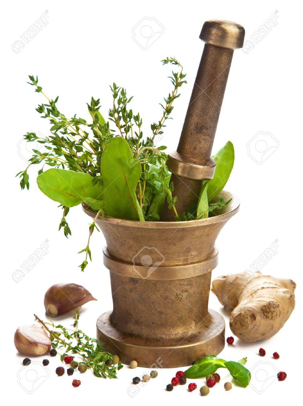 mortar with herbs isolated Stock Photo - 8459690
