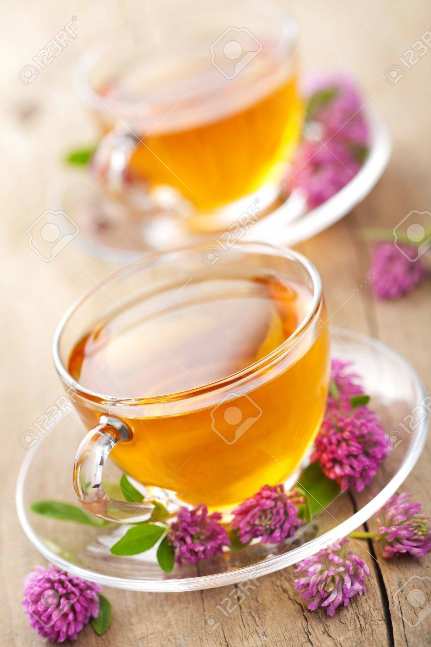 herbal tea and clover flowers Stock Photo - 11037792