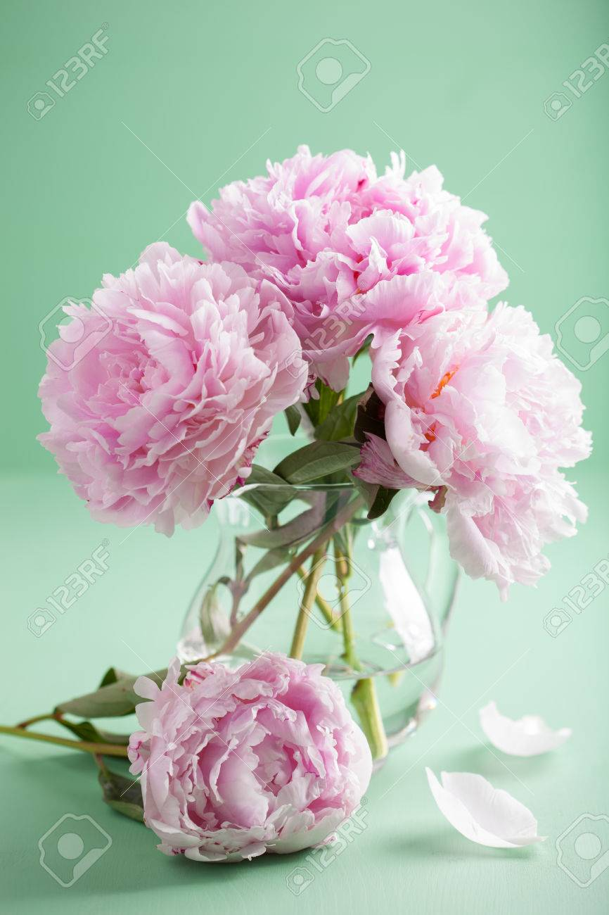 Beautiful pink peony flowers bouquet in vase stock photo picture beautiful pink peony flowers bouquet in vase stock photo 45284630 izmirmasajfo Images
