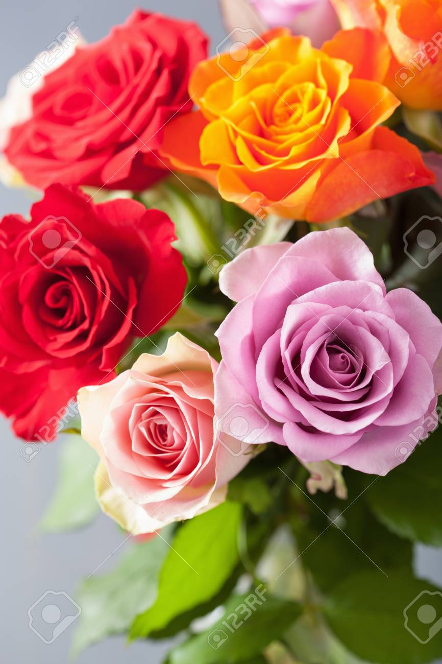 Beautiful Colorful Rose Flowers Bouquet Stock Photo, Picture And Royalty Free Image. Image 65611405.