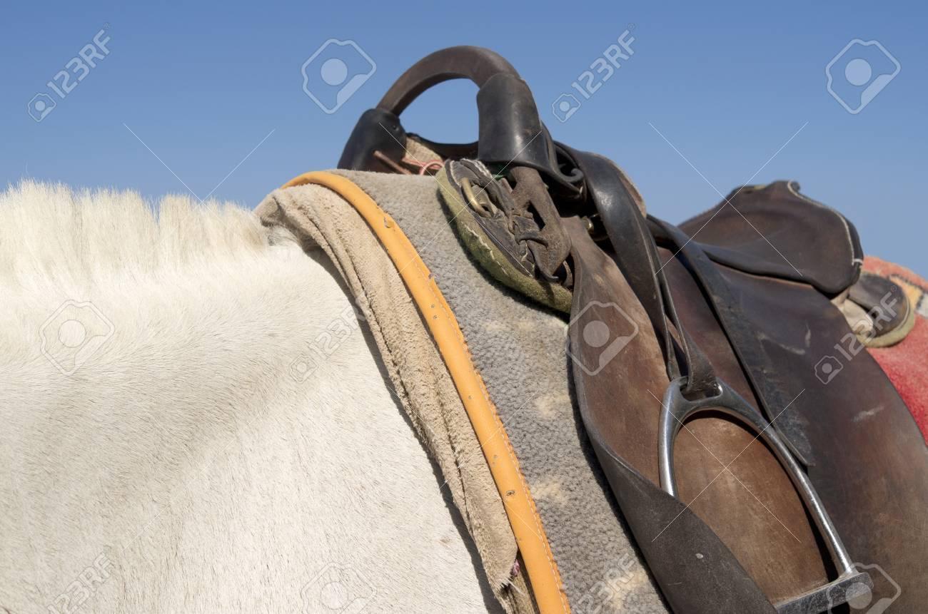 Saddle on a donkey on the island of Santorini in Greece Stock Photo - 22865217