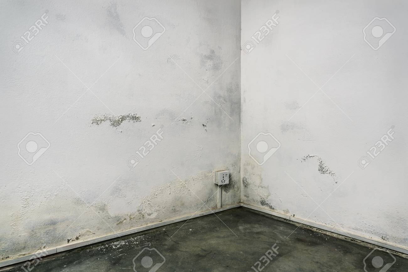 Grungy Room Corner With Concrete Floor And White Walls Damaged