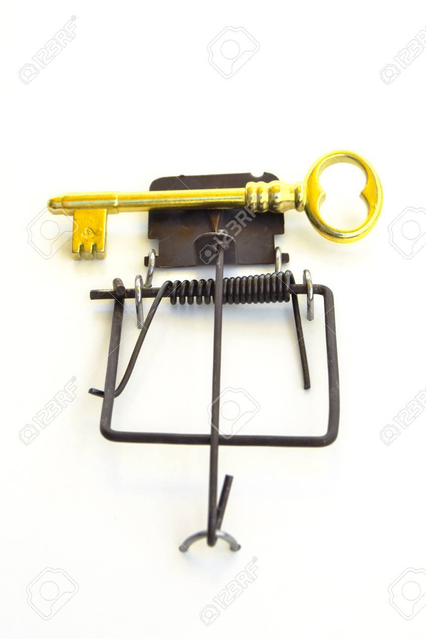 gold house key. GOLD KEY ON A MOUSETRAP - Mousetrap With Gold House Key As Bait. Y