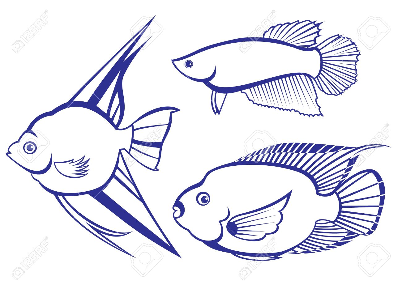 Tropical Fish. Set #3. Vector illustration on white background for design Stock Vector - 8889965
