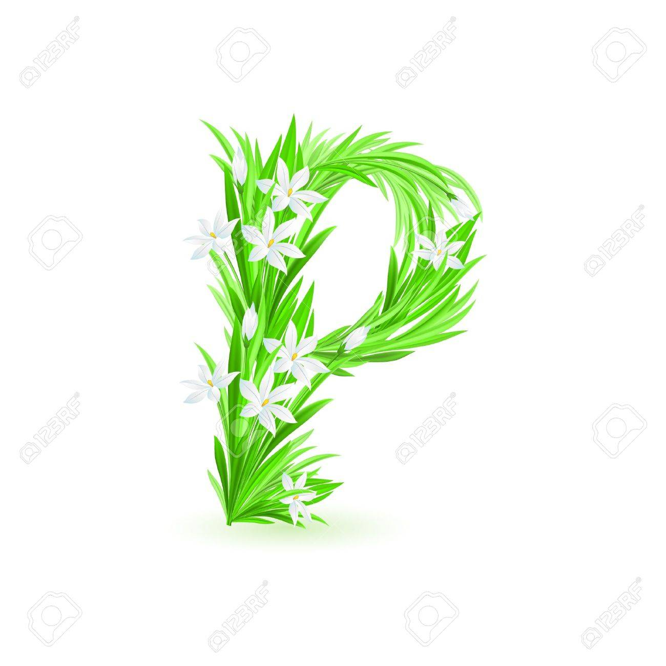 One letter of spring flowers alphabet - P. Illustration on white background Stock Vector - 9262112