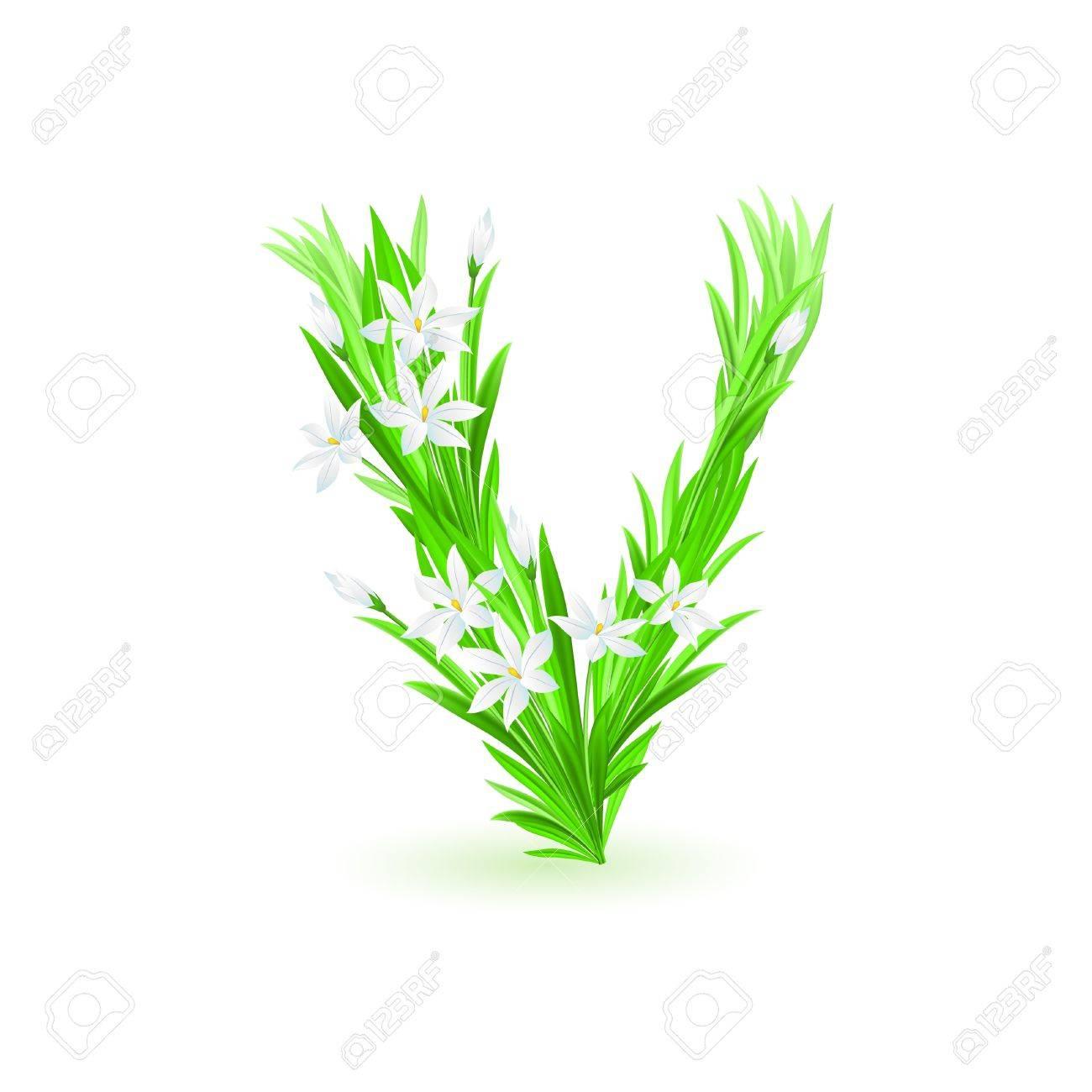 One letter of spring flowers alphabet - V. Illustration on white background Stock Vector - 9262082
