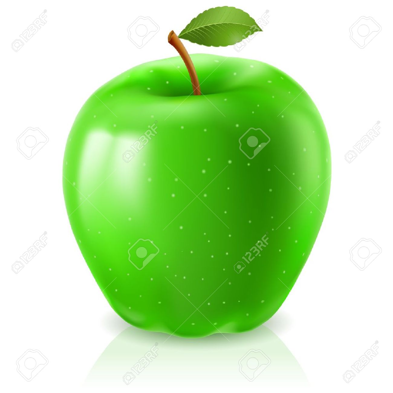 apple green green apple on white background for design - Apple Green Color