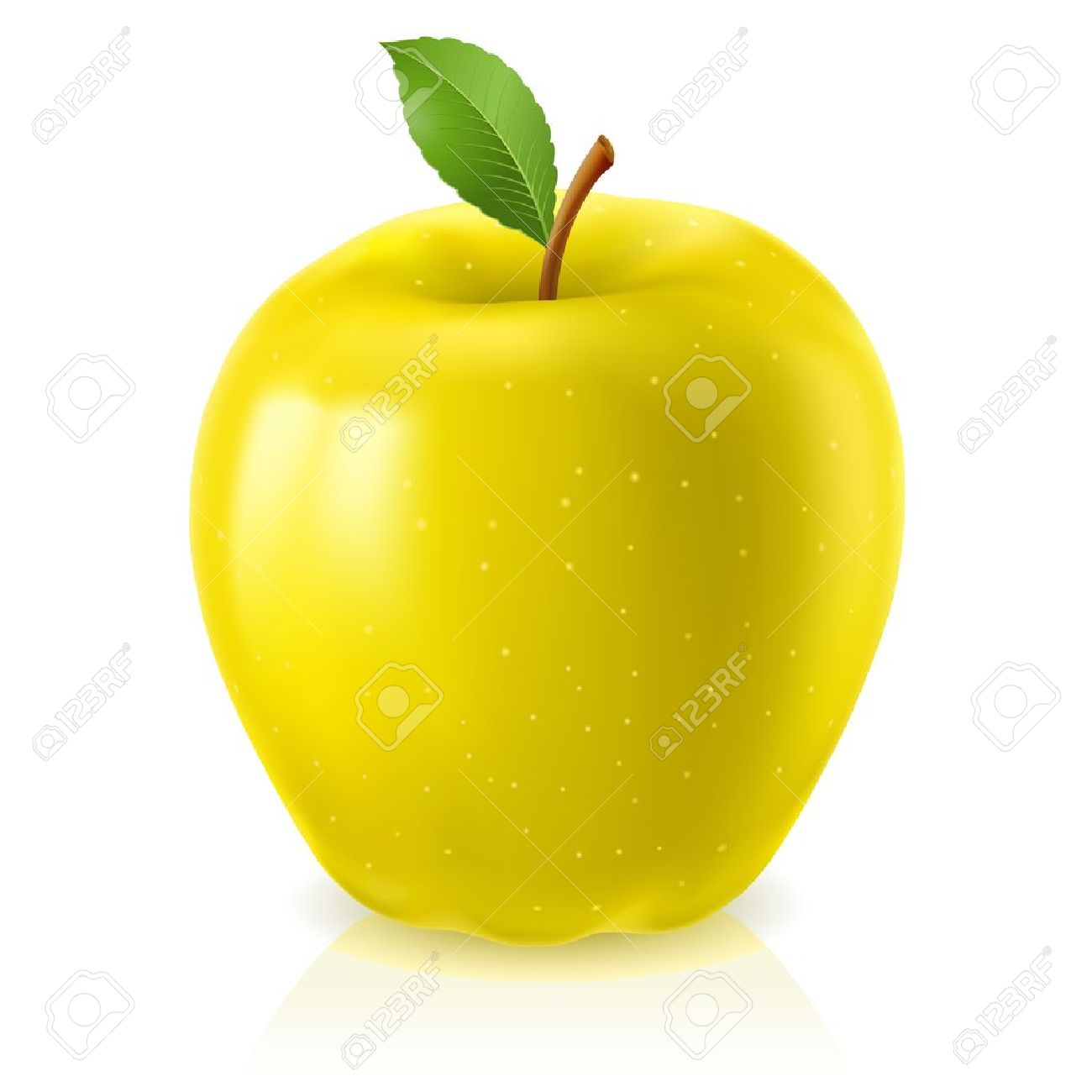 Yellow apple. Illustration on white background Stock Vector - 10459423