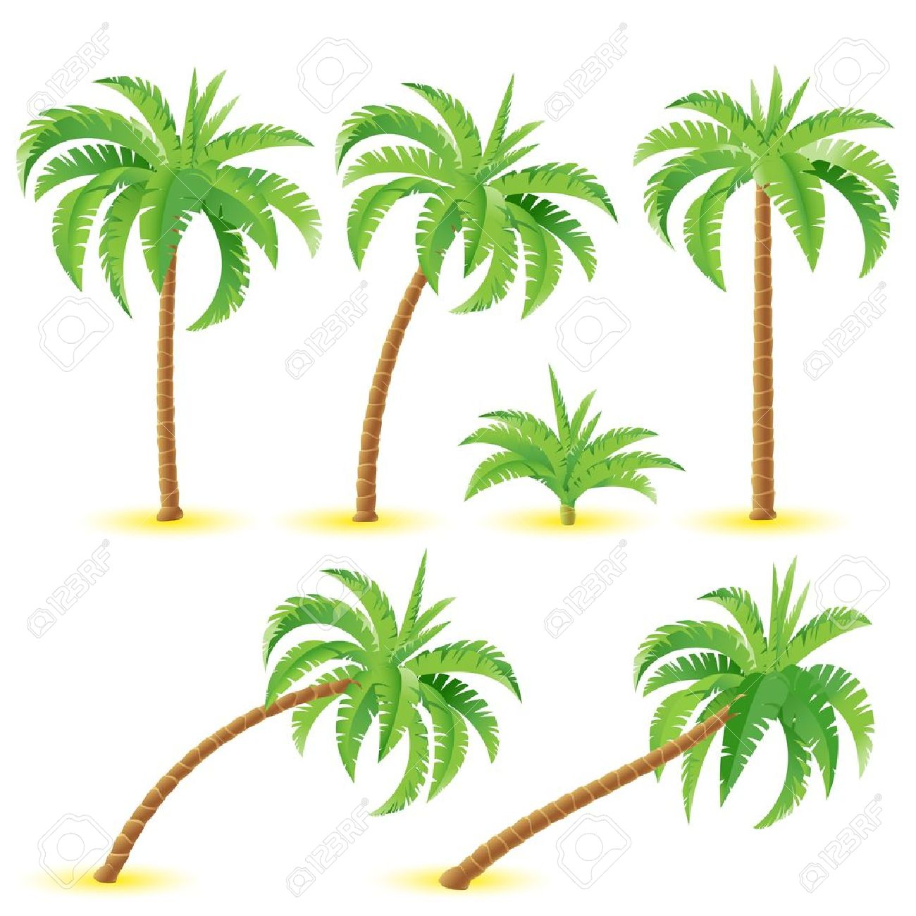 Coconut palms. Illustration on white background for design Stock Vector - 13109324