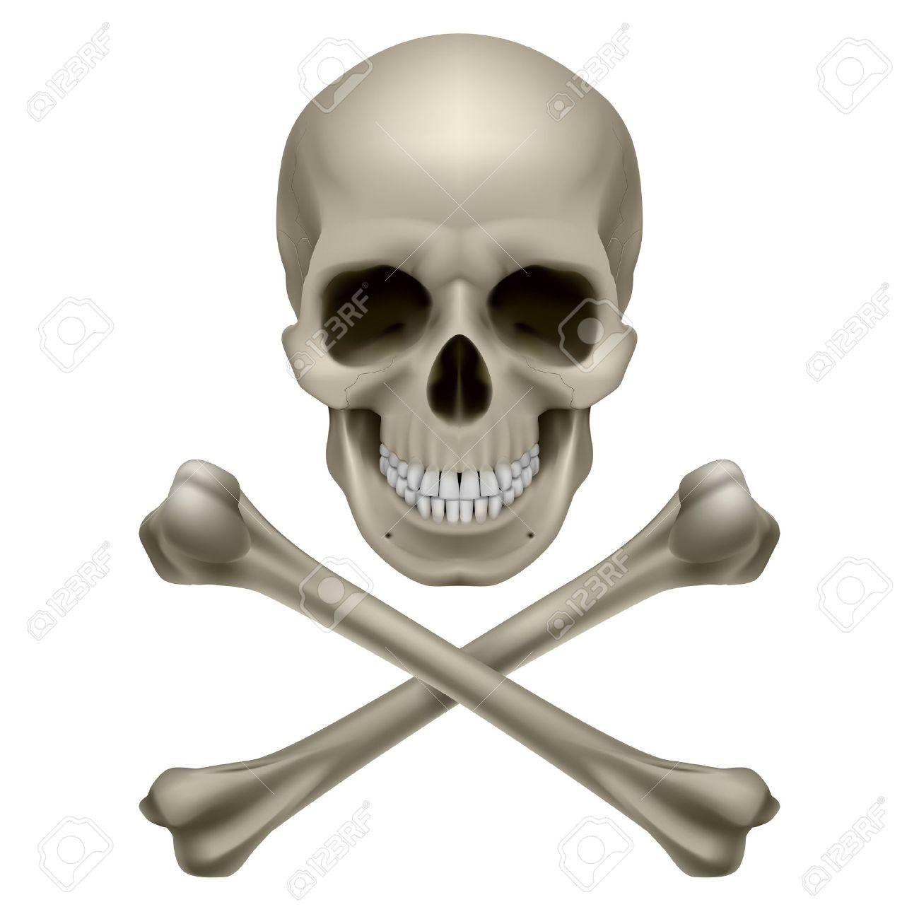 Skull and crossbones. Illustration on white background Stock Vector - 13571909