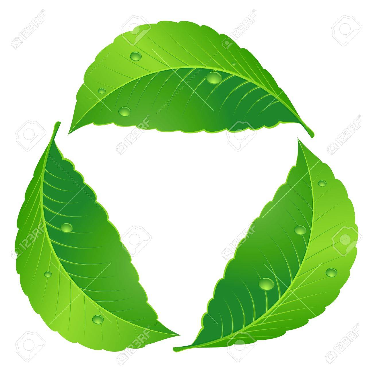Symbol of recycle. Leaf concept. Illustration on white Stock Vector - 15495146