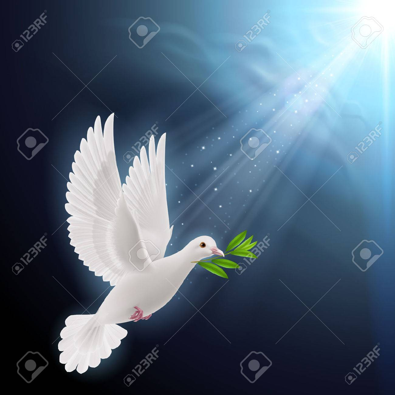 Bird of peace images stock pictures royalty free bird of peace dove of peace flying with a green twig after flood on a dark background buycottarizona