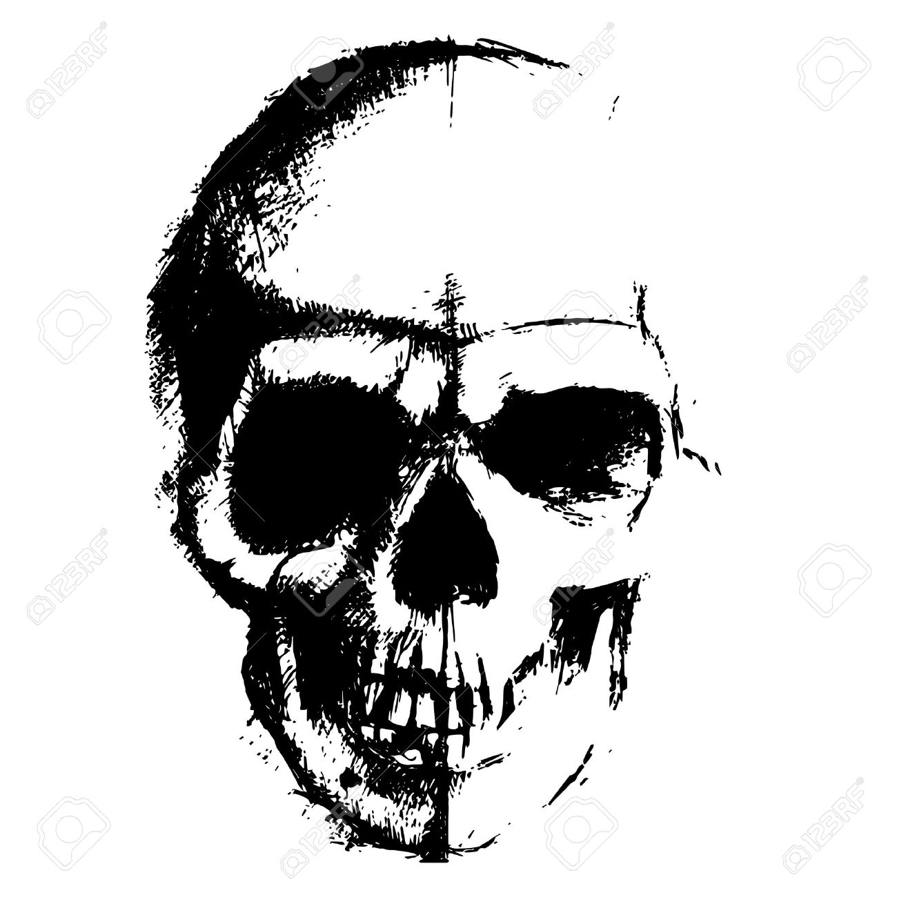 Skull sketch element isolated on white background - 50507758